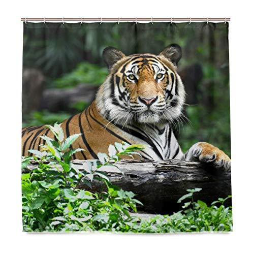 BALII Cute Tiger Duschvorhang 182,9x 182,9cm Polyester Wasserdicht mit 12Haken für Badezimmer