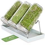 Cressery - Set di 3 vasetti in vetro per germi, con coperchio e colino, in acciaio inox di alta qualità, per piantine, germogli