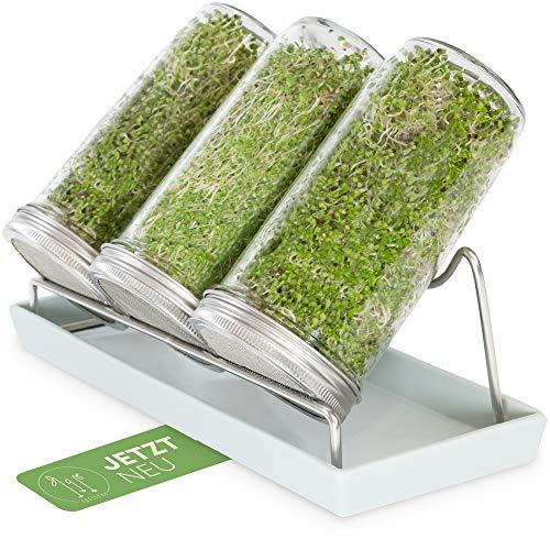 Cressery Sprossenglas Keimglas 3er Set mit Deckel & Sieb aus hochwertigem Edelstahl für Sprossenzucht | Keimglas für Sprossen | Sprossen Keimgerät