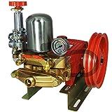 SYD Bomba fumigar de pistón 40bar 22 LTR. Pistón de Acero Uso Profesional.