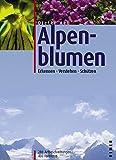 Alpenblumen. Erkennen, verstehen, schützen.