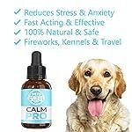 Pets Purest Supplément calmant Normal d'aide de 100% pour des Chiens, des Chats et des Animaux familiers. Réduit l'anxiété et Le Stress chez Vos Animaux de Compagnie (50ml) (UK) #1