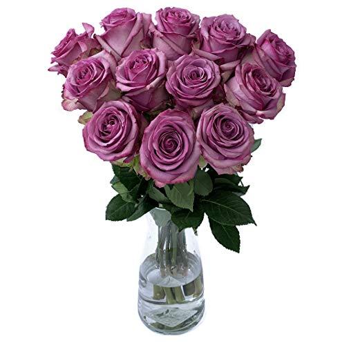 Farm Direct Fresh Lavender Roses | Purple Flower Bouquet of 12 Fresh Roses (Dozen) + Vase Included - Flower Delivery