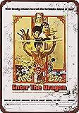 1973 Bruce Lee Enter the Dragon Metall Blechschild Retro