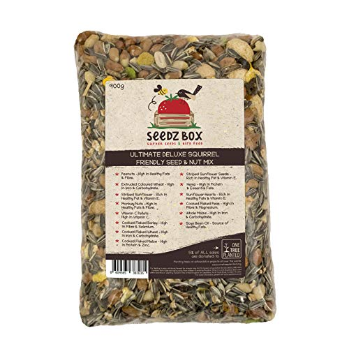 Súper lujosa mezcla de semillas y nueces, comida para ardillas, bolsa de 900 g, SeedzBox Squirrel Chipmunk Food, ardilla