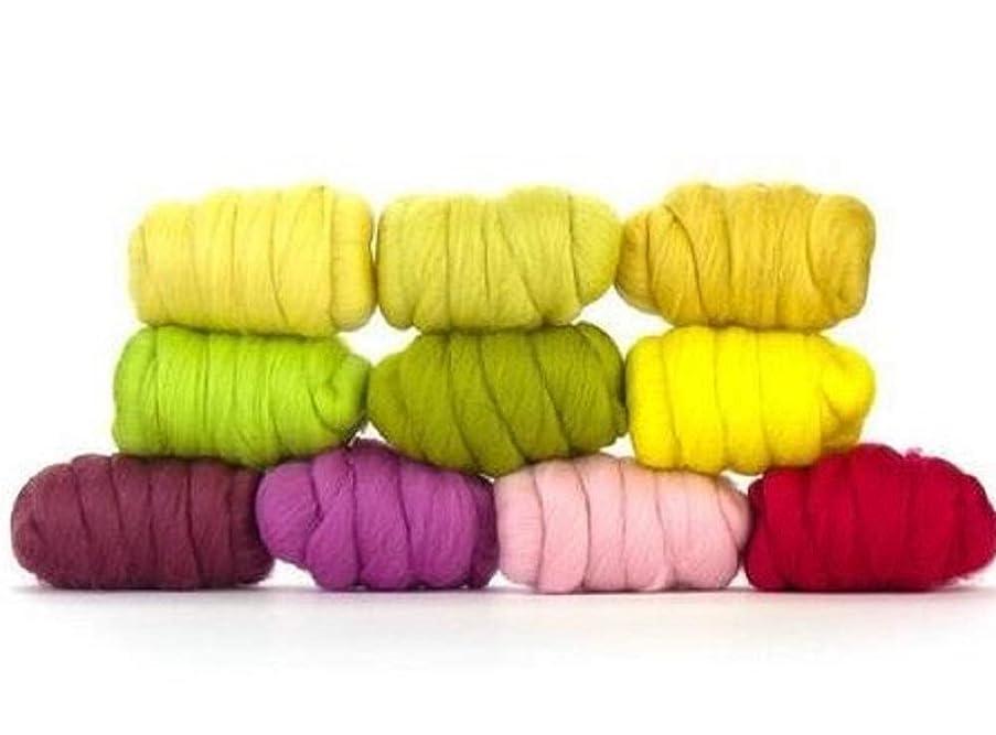 Paradise Fibers Mixed Merino Wool Bag - Spring Blossom (Multi Colored) - Merino Wool Fiber Lot Perfect for Needle Felting, Wet Felting, Hand Spinning, and Blending