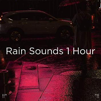 "!!"" Rain Sounds 1 Hour ""!!"