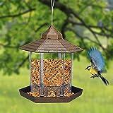 Hanging Panorama Wild Bird Feeder, Plastic Waterproof Bird Food Container for Garden Yard Outdoor Decoration (Bronze)