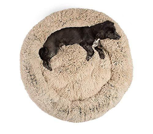 GAOZHEN Cama para mascotas para gatos y perros, suave sofá de cachorro, cama de donut, cama cálida para gatos, colchoneta para dormir, 80 cm, color beige