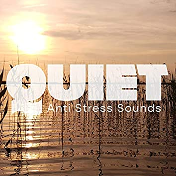 Quiet Anti Stress Sounds - Celestial Serenity, Deep Harmony, Reduce Muscle Tension, Techniques for Anxiety, Relaxing Soundscapes, Peace of Mind, Contemplations