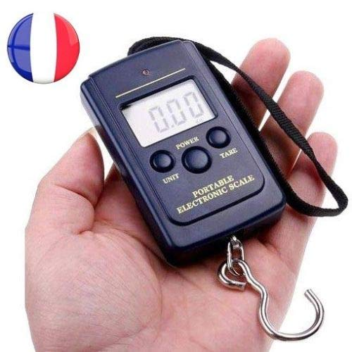 Simplicity: Portable Scales for Luggage Suitcases Weighing Fishing Fish from 10g to 40kg