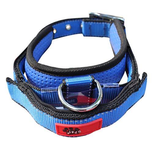 JHFF Einziehbares Hundehalsband Mit Integrierter Leine Und Elastischem Haltegriff Für Haustiere