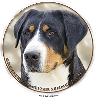 Suchergebnis Auf Amazon De Fur Schweizer Sennenhund Haustier