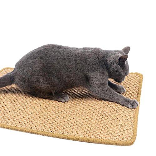 Ausomely Sisalteppich Naturfaser Ideal Kratzmatte für Katzen | schadstofffrei & widerstandsfähig | Sisal Kratzteppich in Vielen Farben und Größen