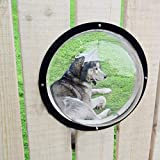 Dog Porthole Window Round Transparent for Fence Pet Peek Look Out Durable Dome,Acrylic Window for Pet Fence Including Bolts & Nuts