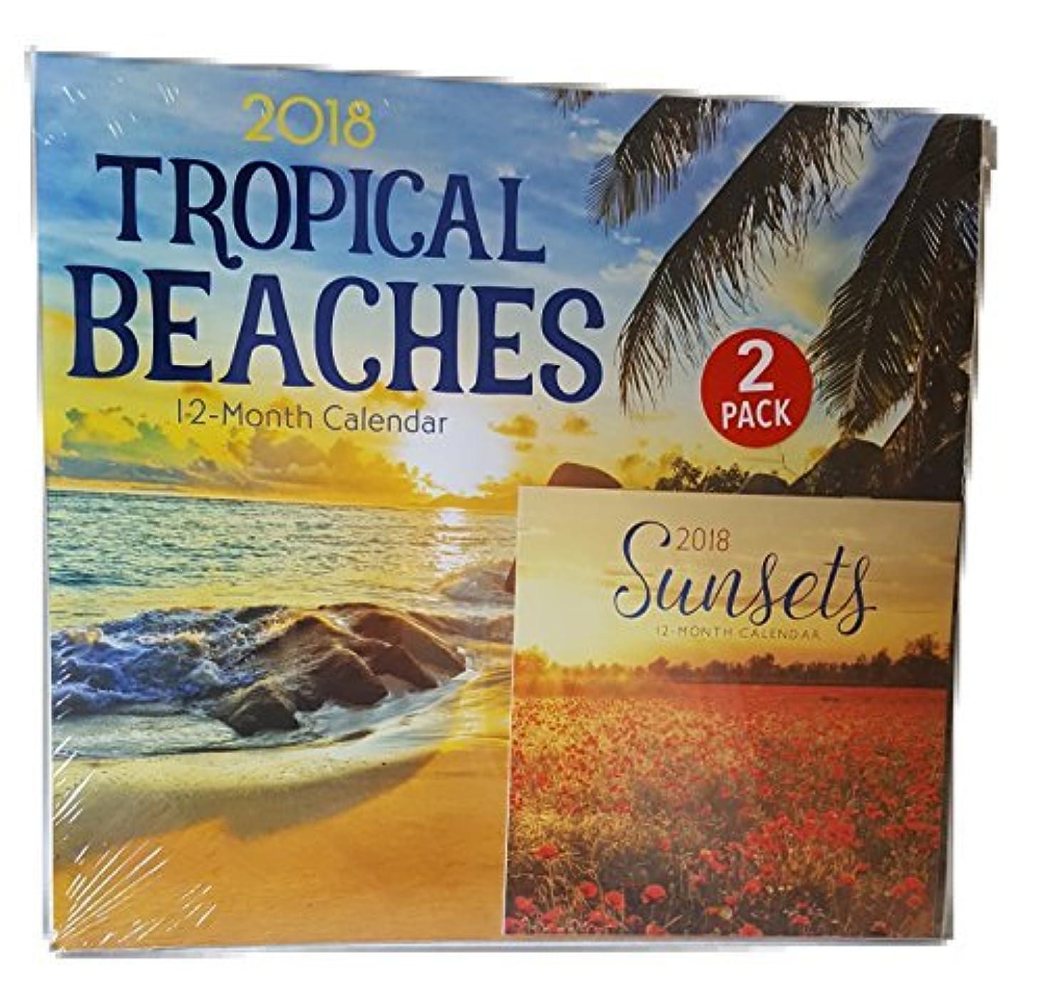 ノイズ鮫ミトン2018 Tropical Beaches 12-Month Wall Calendar with Mini Cal endar 2pcs Gift Set [並行輸入品]