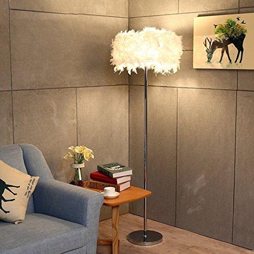 Home staande lamp, staande leeslamp, landelijke warmte, veren, staande lamp, woonkamer, slaapkamer, persoonlijkheid, creatieve studie, oogbescherming, verticale tafellamp, B-D