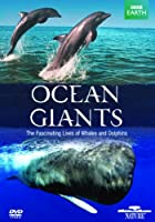 Ocean Giants [DVD] [Import]