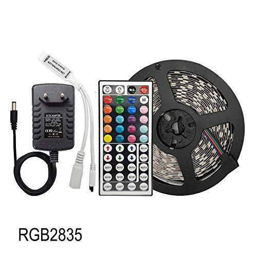 ERCZYO Luce a LED con Cintura Flessibile RGB SMD 5050 30 LED/m 5 M 10 M 15 M diodo a Nastro DC 12V Striscia LED, Controller LED + Adattatore (Color : RGB 2835, Size : 5M)