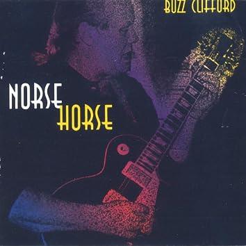 Norse Horse