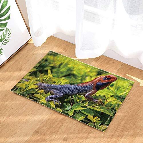 SRJ2018 Chameleon Gecko Imprime alfombras en Hojas Verdes,Habitaciones de niños,cocinas y baños,Cojines de Franela Suave absorbentes,duraderos y Antideslizantes