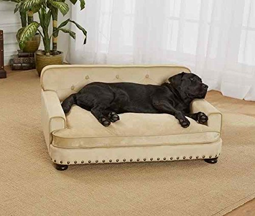 Library Pet Sofa by Enchanted Home