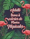 Adulte Livres a Colorier de plantes tropicales: livre de coloriage anti stress art therapie Tropicale scène coloriage pour adulte