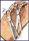 Set di forbici per capelli KAMISORI DIABLO 6 Pollici Fatto a mano in Giappone