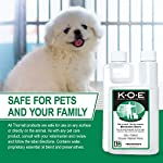THORNELL KOE-P K.O.E Kennel Odor Eliminator Concentrate 12