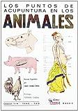 Los puntos de acupuntura en los animales