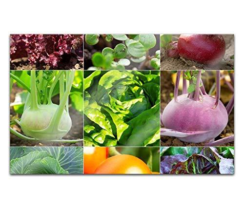 Acrylglasbilder 80x50cm Gemüse Salat Tomate Broccoli Küche Acryl Bilder Acrylbild Acrylglas Wand Bild 14H225