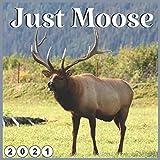 Just Moose: 2021 wall & Office Calendar 16 Monthe