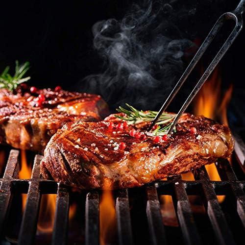 GREADEN- BBQ Grill Barbecue À Gaz INOX DÖNER- 4 BRÛLEURS+ 1 KIT RÔTISSOIRE (1 BRÛLEUR Infrarouge & TOURNEBROCHE)+ 1 FEU LATÉRAL et Thermomètre, 22KW, Grille/Plancha+Housse