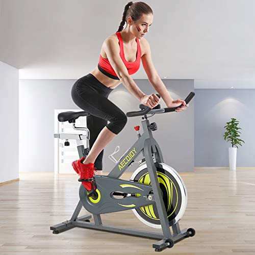 AECOJOY Cycling Exercise Bike 330 Lbs Weight Capacity, Indoor Cycling Bike Silent Stationary Bike with LCD Monitor, Cycle Bike for Exercise, Heavy Flywheel Upgraded Version