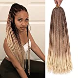 Refined hair Products 6Packs 24inch Ombre Box Braids Crochet Braids Braiding Hair Weave 22Strands High Temperature Synthetic 3S Box Braids For African Women (Ombre Blonde,6packs)