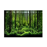 Haofy Etiqueta Engomada del Fondo del Acuario, Fish Tank Backdrop PVC Adhesive Underwater Forest Tank Background Poster Backdrop Decoración Papel(61 * 30cm)