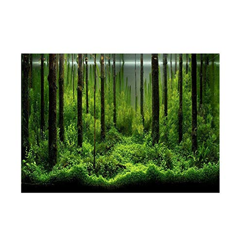 Forest Tank Aquarium Poster, PVC Adhesive Underwater Forest Tank Background Poster Backdrop Decoration Paper(6130cm)