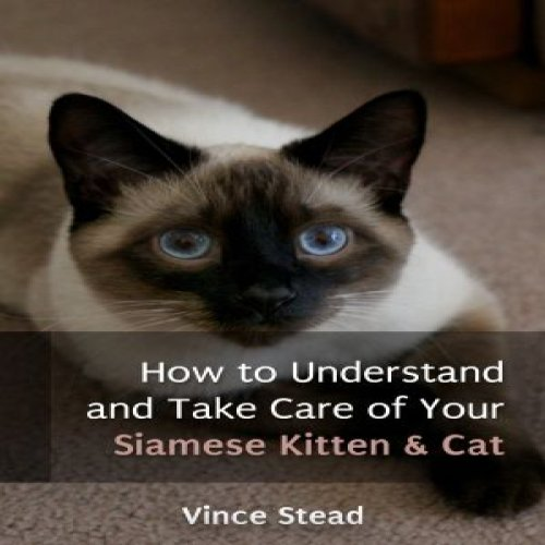How to Understand and Take Care of Your Siamese Kitten & Cat cover art