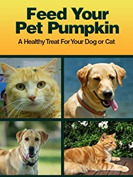 Feed Your Pet Pumpkin by [Delorse  Mays]