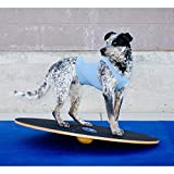 Ball Dynamics FP-WB20 FitPAWS 50 cm Wobble Board