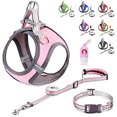 JSXD Small Dog Harness,Puppy Harness,Adjustable Leash and Collar Set for Small Dogs,Step-in Dog Harness ,3M Reflective Pet Dog Vest for Small Medium Puppy from JSXD