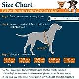Vivaglory Hunde-Schwimmweste Float Coat Wassersport Schwimmhilfe Rettungsweste für Hunde Haustier Mit Griff und Reflektoren - 2