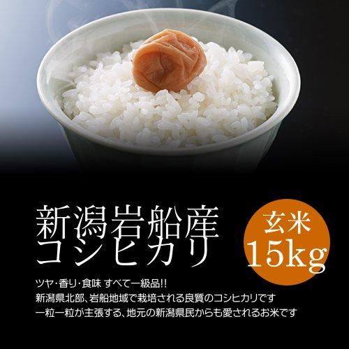 【お歳暮・冬ギフト】岩船産コシヒカリ 白米(精米) 15kg(5kg×3袋)/モチモチ食感が人気の新潟米