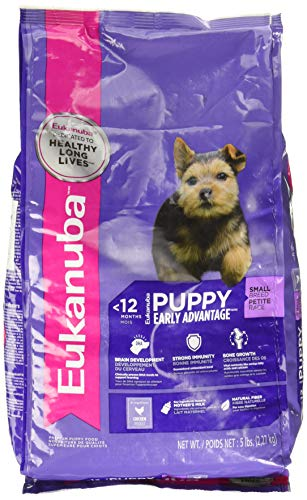 Eukanuba Puppy Small Breed Puppy Food