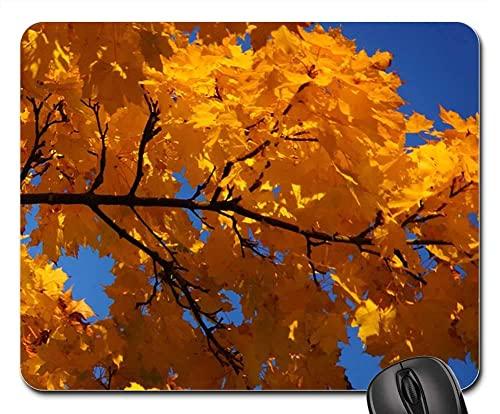 Mauspad Ahorn Ahornblatt Blatt Herbst Helle Farben Gelb Office Mauspad Gemütlich Mousepads Matte Komfort Office Mat Für Voyager Office Cadeau 25X30Cm