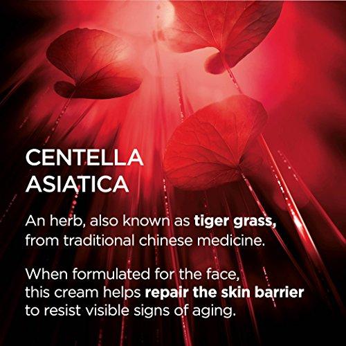 51ODArzs3aL - L'Oreal Paris Revitalift Cicacream Anti-Aging Face Moisturizer with Centella Asiatica for Anti-Wrinkle and Skin Barrier Repair, Fragrance Free, Paraben Free, 1.7 fl. oz.