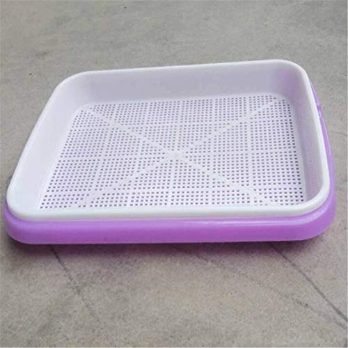 XinLuMing 5pc Seed Sprouter Tray Seed Cup Sprouts Seedlings Wheat Grasser Planter Hydroponics Permanently Seeds Germination Tray For Garden Home Office (Color : Purple)