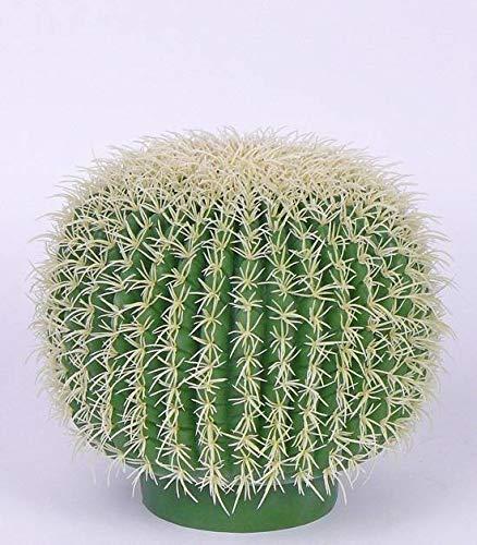 artplants.de Set 2 x Cactus Bola de Oro de plástico Salazar, Placa en la Base, Verde-Blanco, Ø30cm - Cactus Decoracion - Pack de Cactus Falsos