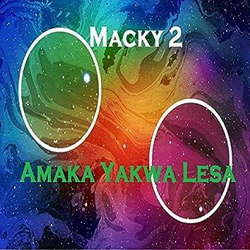 Amaka Yakwa Lesa