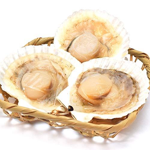 ほたて片貝 20枚 冷凍便配送 冷凍 北海道産 ホタテ 殻付き 貝柱 海鮮 バーベキュー BBQ